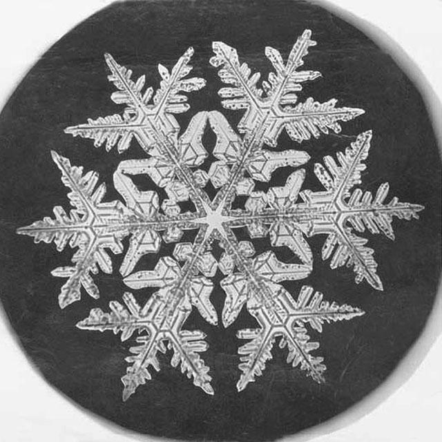 bentley_snowflake_micrograph_1890